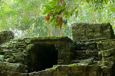 Palenque 56