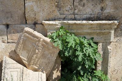 Denizli - Hierapolis 51