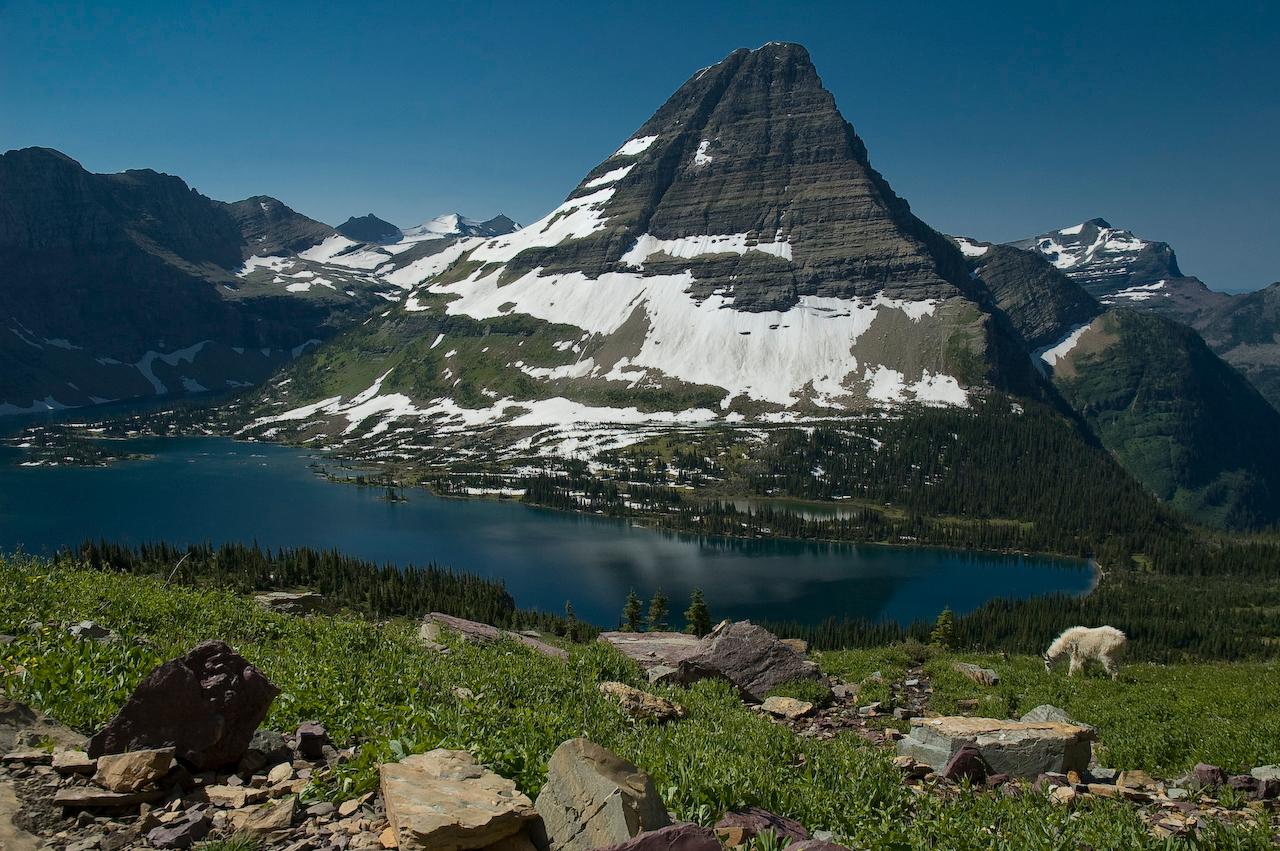 """<A HREF=""""http://dmenkes.smugmug.com/gallery/5605146_WeMWu"""">Hidden Lake</A>, Glacier National Park, Montana"""