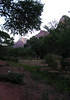 Waking up at the Watchman Campground, Zion. We arrived at 9PM the night before so we had no idea what the setting was like. Truly beautiful!