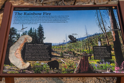 Information about the 1992 fire in the Reds Meadow area, which you can see the destruction as you hike to Rainbow Falls