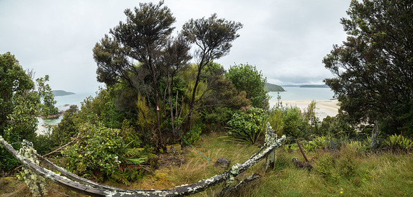 At Wohlers Monument, Rakiura