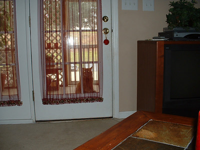 June 2005 - Raleigh, North Carolina - Inside Lynn's home - OJ wants inside