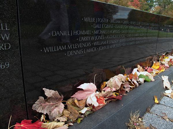 Fall leaves at Viet Nam Memorial
