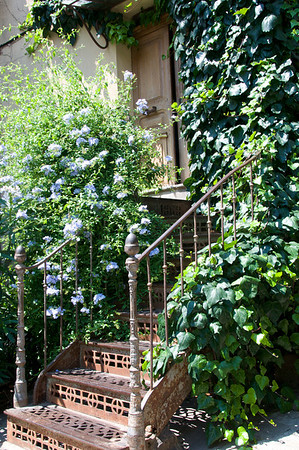 Another flower lined staircase.