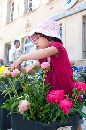 Cyane counting the peonies.