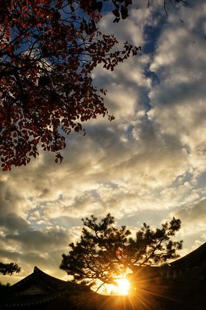 Random Autumn Shots 2015