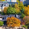 Autumn Colors, Unhyeongung Palace