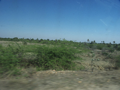 Taken at Latitude/Longitude:25.251328/74.632040. 4.98 km South-West Bholi Rajasthan India  (Map link)