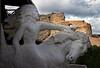 Crazy Horse1jpg