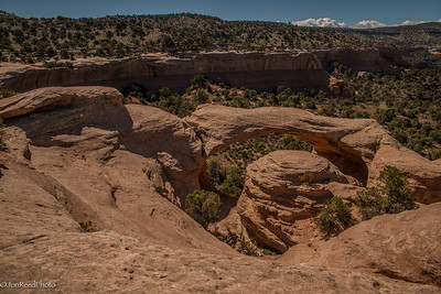 The first arch you see is also the last arch you see. Cedar Tree Arch from the top of the formation.