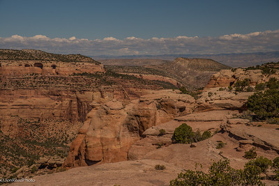 Looking over Rattlesnake canyon from the top.