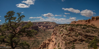 Looking into the Colorado National Monument canyons.