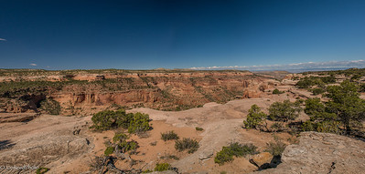 Overlooking Rattlesnake canyon from the top.