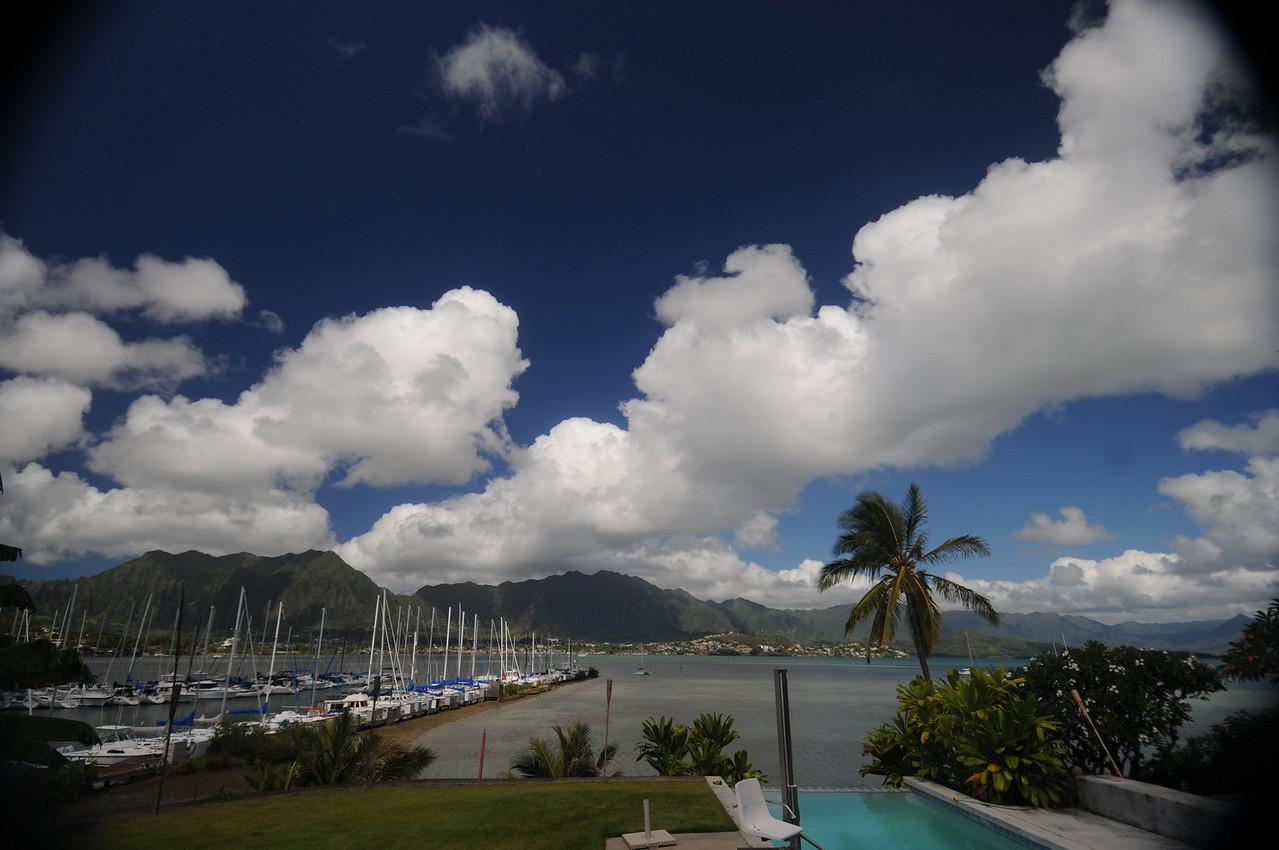 The view from Kumu's backyard on beautiful Oahu.
