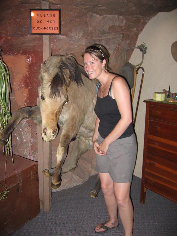 Sarah, a horse lover?