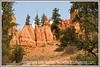 A view of some of the pinnacles in Red Canyon in Utah near Bryce National Park