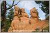 Rock formations in Red Canyon in Utah near Bryce National Park