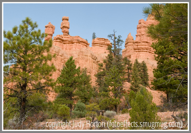 Rock formations in Red Canyon near Bryce National Park in Utah