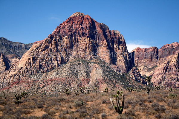 Red Rock Canyon - Las Vegas