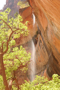 Zion waterfall.