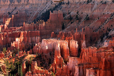 hoodoos in Bryce canyon.