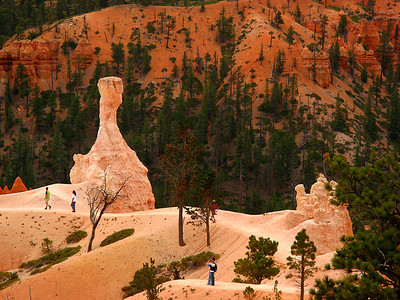 walking in Bryce canyon.