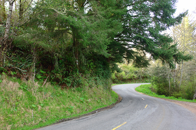 Mattole road - the beginning after Ferndale