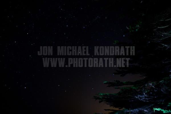 Redwoods_122111_Kondrath_0180
