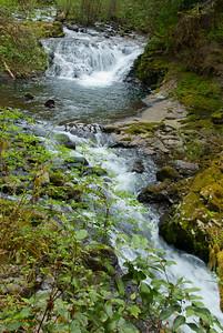 Sweet Creek, near Mapleton OR
