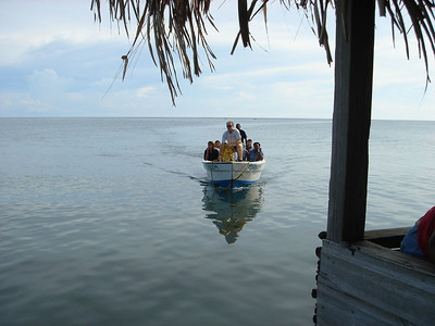 Reef Conservation trip for Oak Ridge school (Santa Helena, Bay Islands, Honduras)