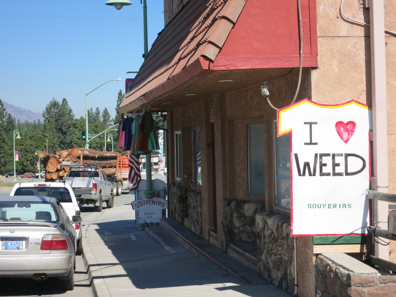 Weed, California was the last real town I'd see until Bend. Its economy is based on logging and the town's name.