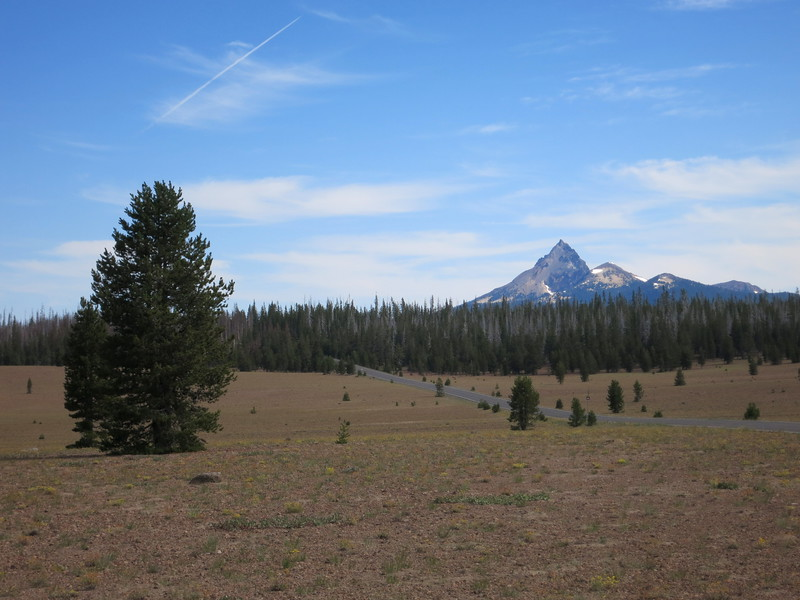 Mt. Thielsen (last eruption: 250,000 years ago) over the Pumice Desert (pumice from Mt. Mazama eruption, 7,700 years ago).