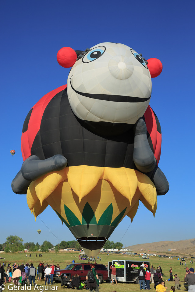 This lady bug balloon originally is from Texas.  Jenny found out it cost about $75,000 to make.  This balloon did not take off.  Instead it remained tethered to the ground and was used to give the general public rides to about 40 feet in the air before being pulled back to the ground.