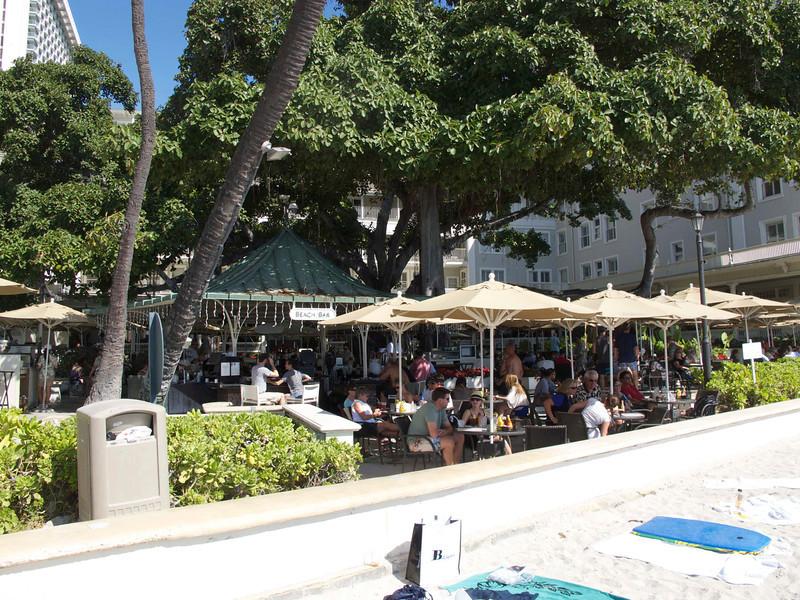 The banyon tree at the Beach Bar was deliciously shady, and the food was deliciously, er, delicious.