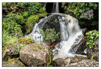 This was the waterfall in our garden at Sam's Cottage in Corrie on Arran.