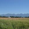 the Louden farm