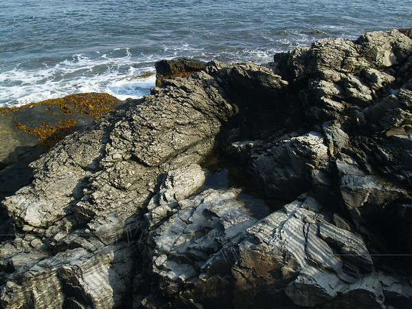 Rock formations along the Cliff Walk, Newport