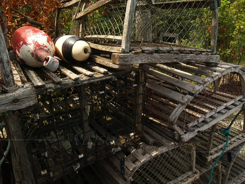 Lobster traps at Wickford Marina
