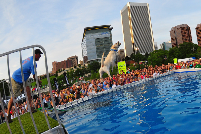 Dominion River Rock Fest Dog Jumping- Richmond Virginia
