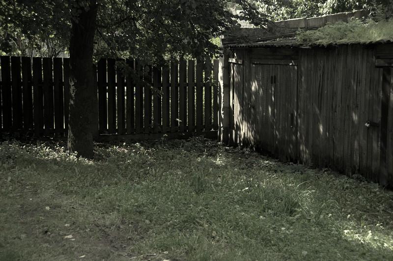 DSC_5196