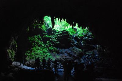 Rio Camuy Caverns