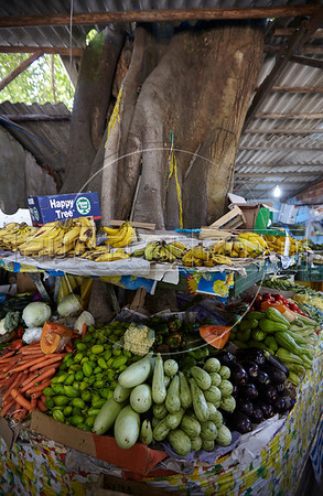 A fresh produce market buit around a tree in Conceição de Jacarei, Mangaratiba, Rio state, Brazil. the marked is a great stop to stock up on items while traveling the Rio-Santos highway. The 500 plus kilometer road runs along the Atlantic Ocean, passing through, near and around dozens of beaches, waterfalls, mountains and forest. It is arguably one of Brazil's most beautiful roads.  (Australfoto/Douglas Engle)
