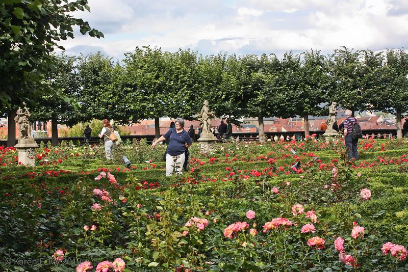 Dom gardens