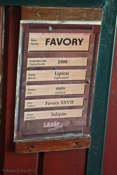 Stall name board for Favory, Lippizaner stallion