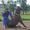 Csikos cowboys demonstrating horsemanship