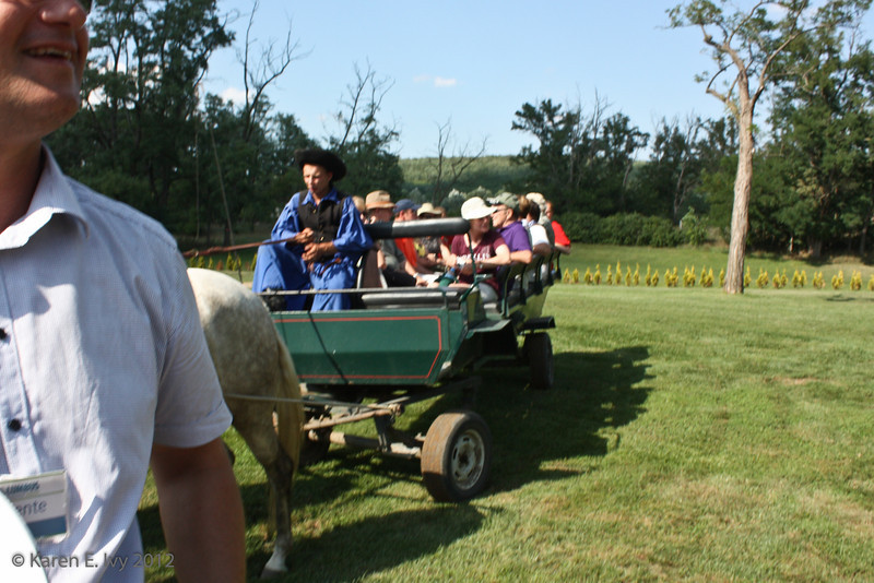 They took us for wagon rides