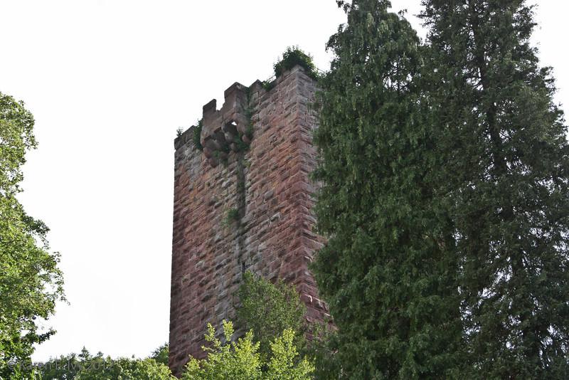 Miltenberg castle tower