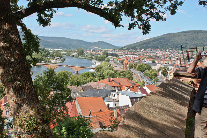 Miltenberg and the Main, from the castle walls