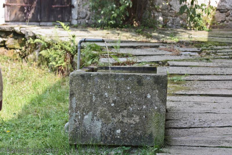 Animal watering trough?